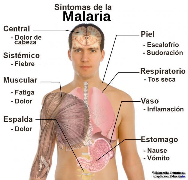 enfermedades que causan dolor: